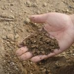 Major Soils of India| All you need to Know.