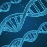 DNA Full Form | What is DNA? Structure, Types